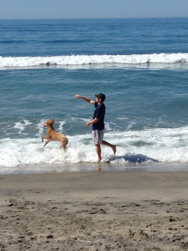 Dr. Mark Warner and Cali at Dog Beach